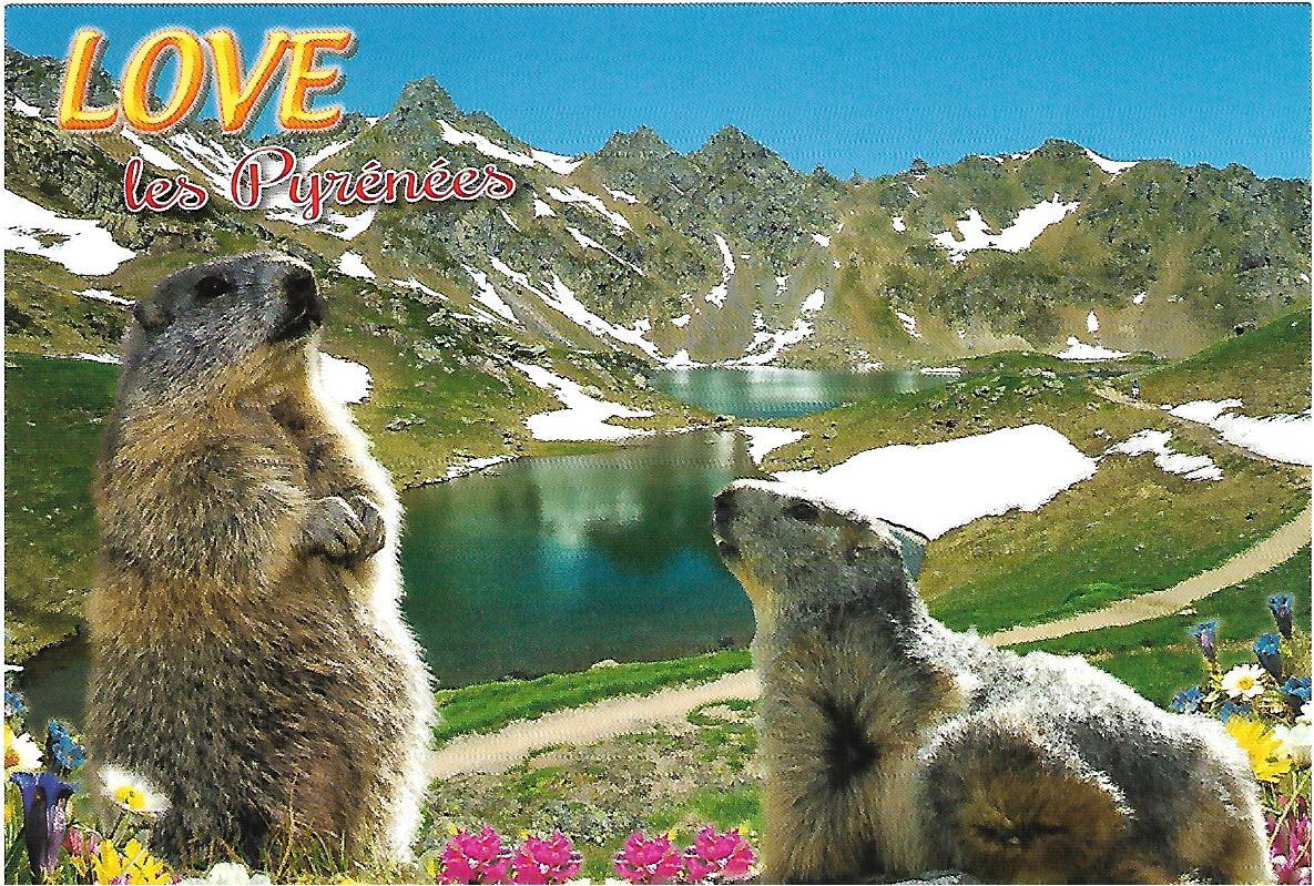 les Pyrénées carte postale